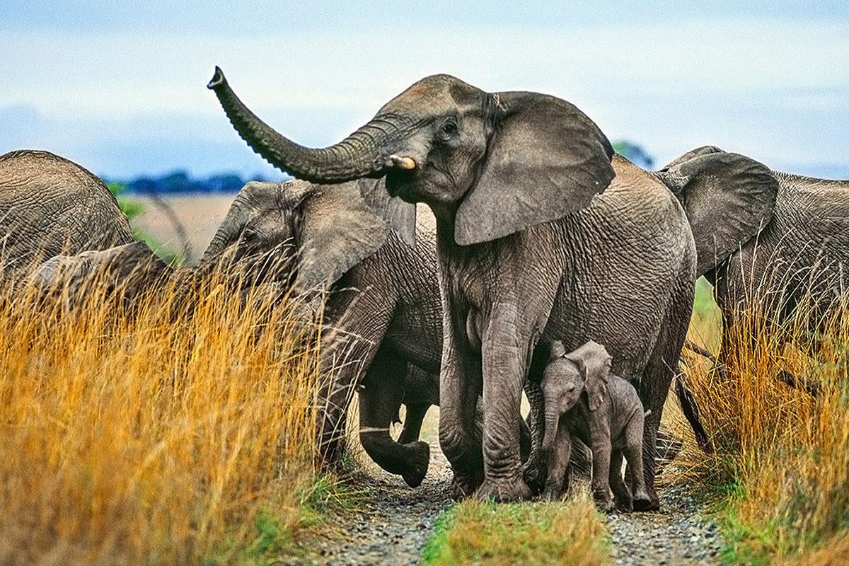 Potchefstroom, South Africa